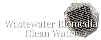 Wastewater Treatment Biomedia & Random Dump Plastic Tower Packing Media